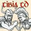 Tibia Online MMORPG Tower Defense online game