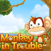 Monkey in Trouble online game