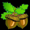 Fight for acorns online game