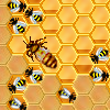 HoneySweeper online game