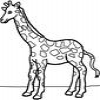 Coloring Giraffes -1 online game