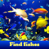 Find fishes. Find objects online game