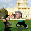 Political Duel 2 online game