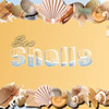Sea Shells online game