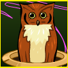 Whack An Owl online game
