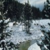 Yellowstone Jigsaw online game
