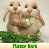 Funny toys. Find objects
