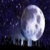 Moon Jigsaw