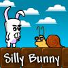 Silly Bunny Adventure