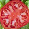 Tomato Hidden Numbers